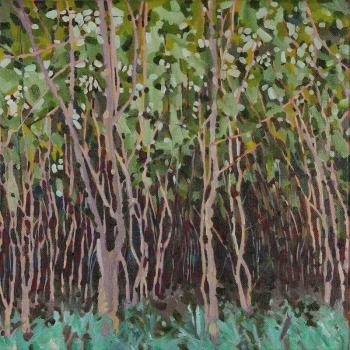Wild Tamarind Grove